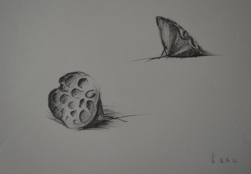 Hülsen und Früchte